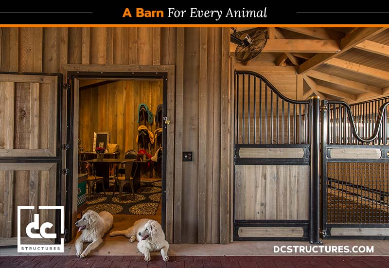 Dog Kennels And Other Non Horse Barn