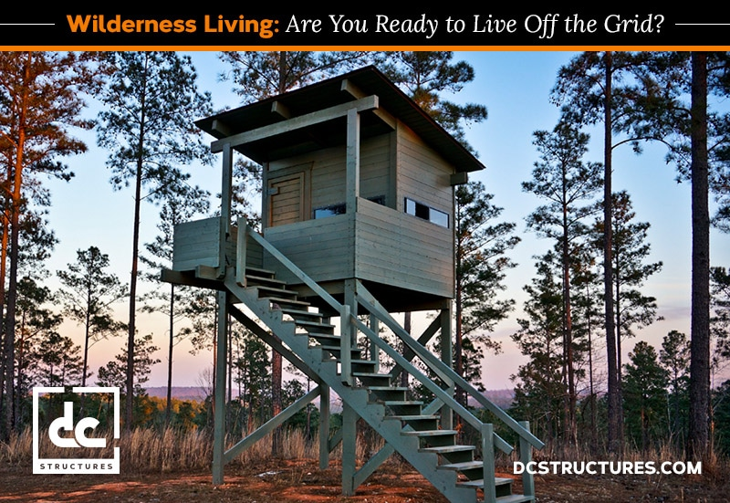 Wilderness Living: Are You Ready to Live in the Woods?